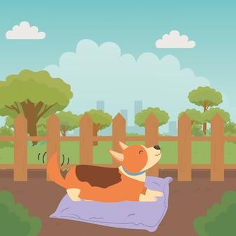 Hond van cartoon
