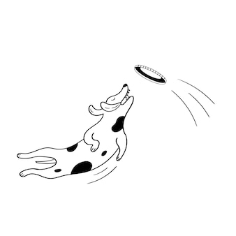 Hond vangt vliegende schotel