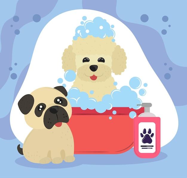 Honden die in bad gaan