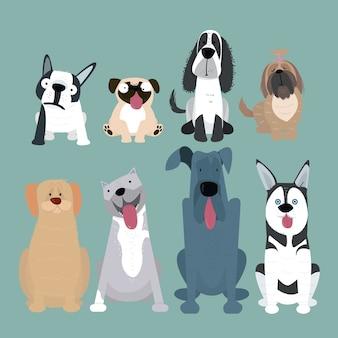 Honden fokken collectie