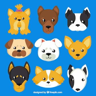Honden fokt avatars