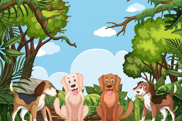 Honden in jungle scene