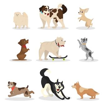 Honden set. verzameling van huisdieren die verschillende activiteiten doen