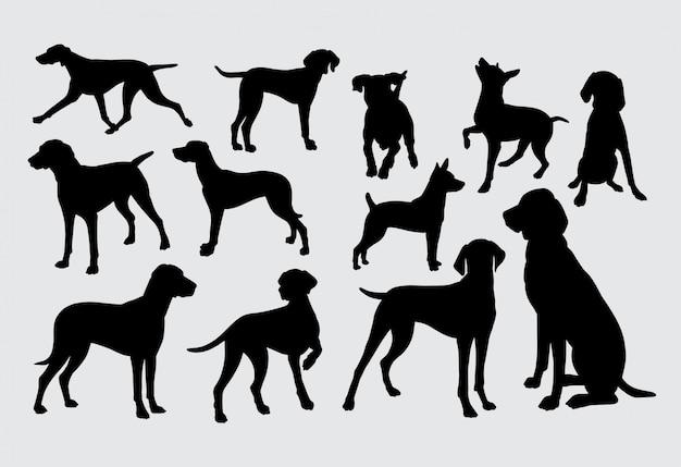 Honden silhouet