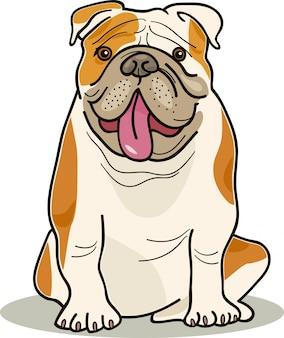 Hondenrassen: bulldog