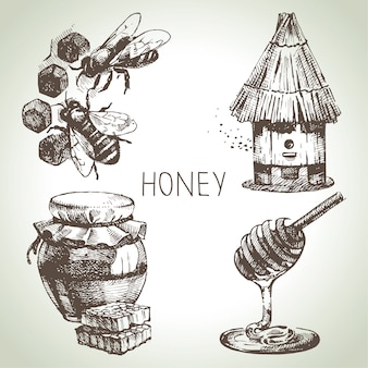 Honing set. hand getekend vintage illustraties