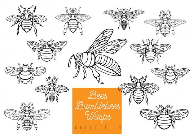 Honingbij hommels wespen set schets stijl collectie invoegen vleugels embleem symbolen hand getekende gravure illustratie