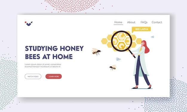 Honingbijen thuis bestuderen, bijenstal-landingspaginasjabloon. kleine vrouwelijke wetenschapper met een enorm vergrootglas die bijenlarven leert in enorme honingratencellen. cartoon vectorillustratie