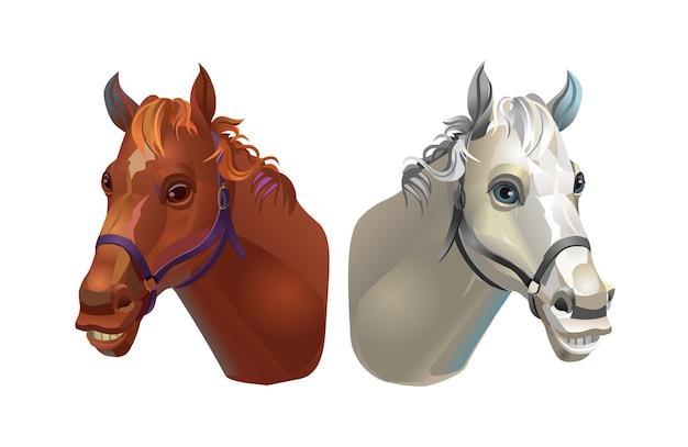 Hoofden van bruine en witte paarden