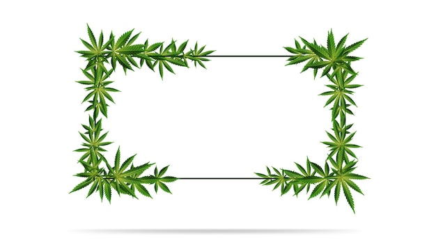 Horizontaal frame van groene cannabisbladeren.