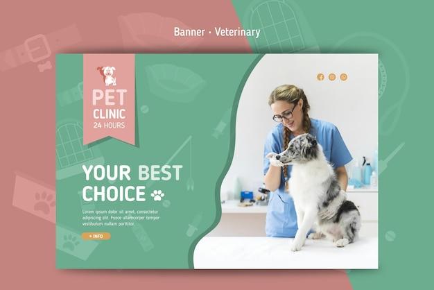 Horizontale banner voor veterinair
