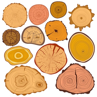 Hout slice textuur treee cirkel gesneden grondstof set