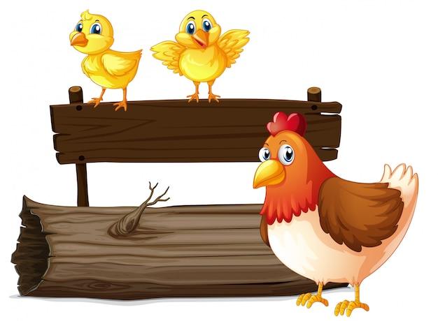 Houten bord met twee kuikens en kip