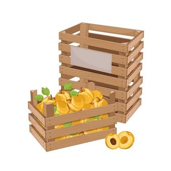 Houten kist vol met abrikoos