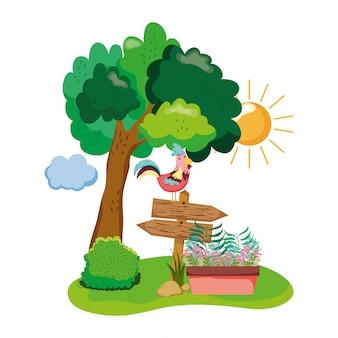 Houten pijl met haan en kamerplant in de tuin