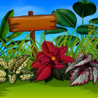Houten plank en bladeren