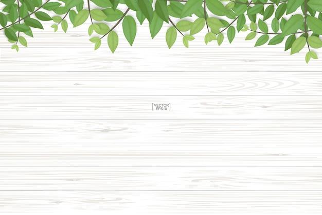 Houten plank textuur en groene bladeren