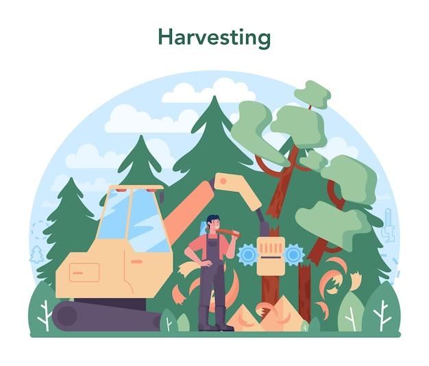 Houtindustrie en houtproductieconcept houtkap