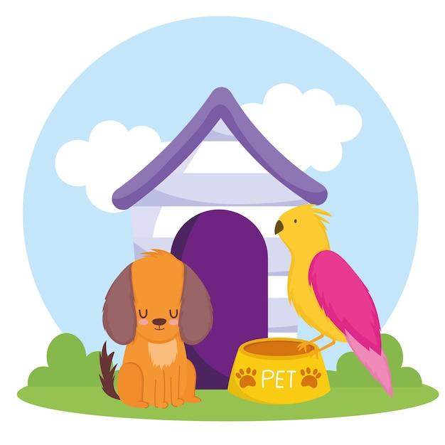 Huisdier hond papegaai kom met voedsel en huis vectorillustratie