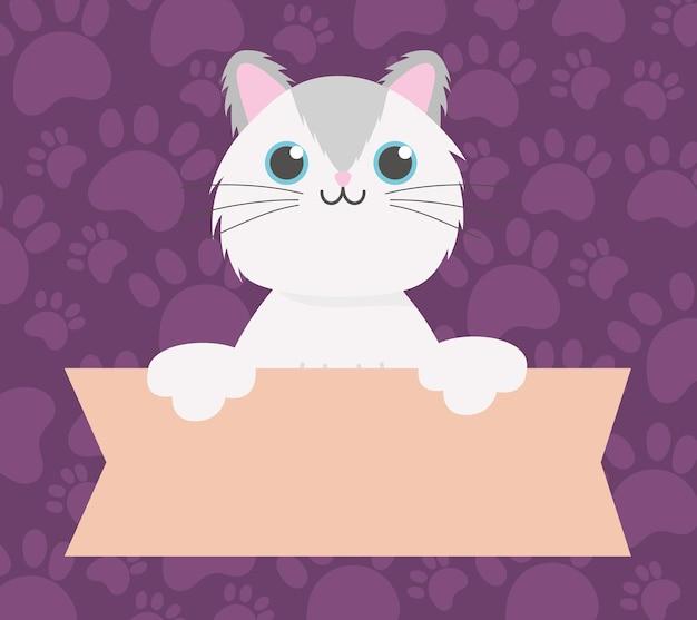 Huisdier kat met banner, dierlijk beeldverhaal binnenlandse vectorillustratie