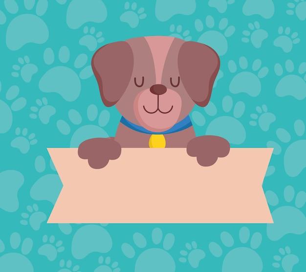 Huisdier schattige hond met banner, dierlijk beeldverhaal binnenlandse vectorillustratie