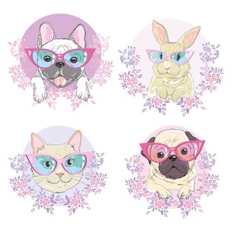 Huisdieren gezicht, hond, kat en konijn