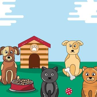Huisdieren katten en honden voerbak en houten huis speelgoed