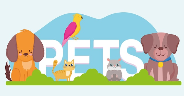 Huisdieren woord, schattige hond kat hamster en papegaai dieren vector illustratie