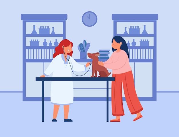 Huisdieronderzoek door lachende dierenarts in kliniekinterieur