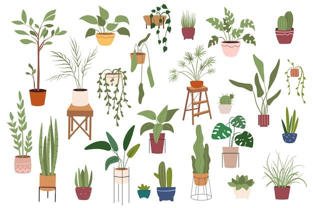 Huisplanten in potten geïsoleerde scènes set
