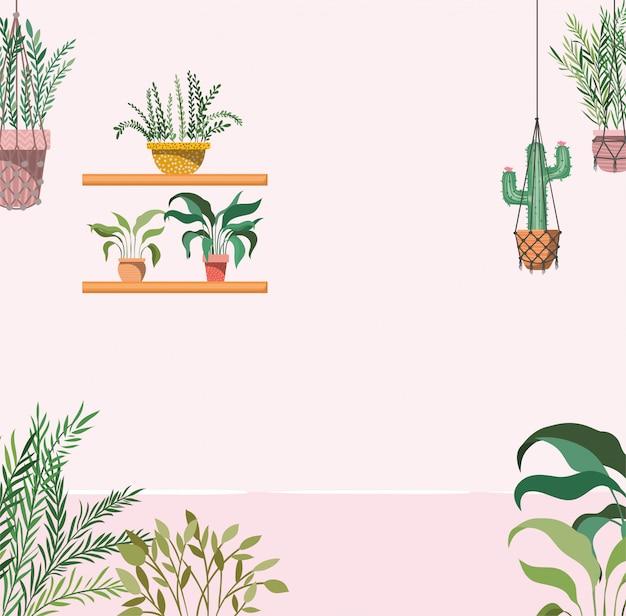 Huistuin met planten die scène hangen