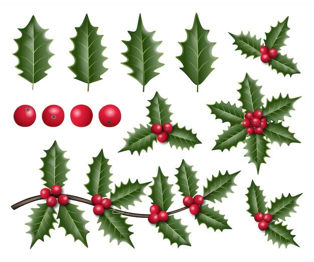 Hulstblaadjes en bessen voor kerstversiering