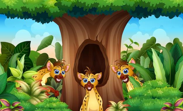 Hyena'sbeeldverhaal het spelen onder de holle boom