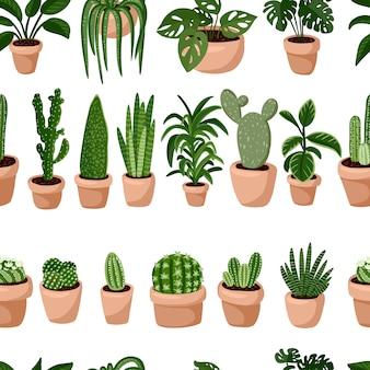 Hygge ingemaakte vetplanten planten