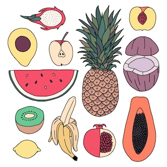 Icon set van fruit. ananas, watermeloen, appel, kiwi, kokosnoot, papaja, draak, granaatappel, banaan, citroen, abrikoos, avocado.