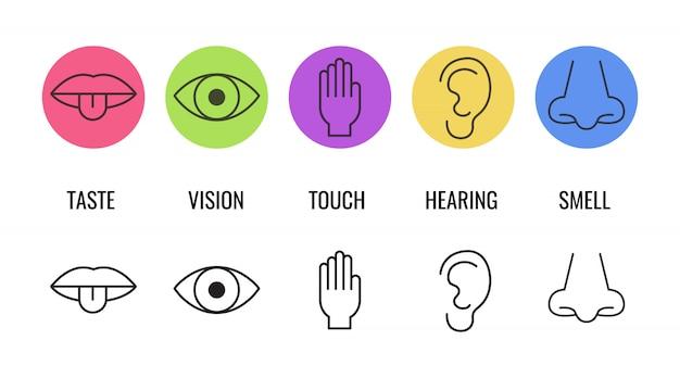 Icon set van vijf menselijke zintuigen