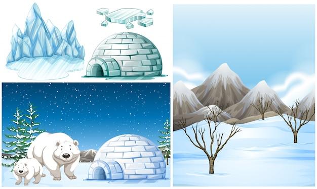 Ijsberen en iglo op sneeuwgebied