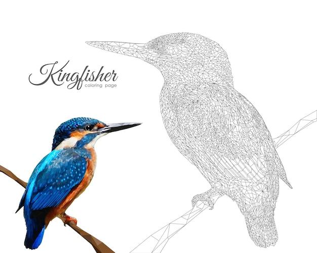 Ijsvogel kleurplaat pagina stijl illustratie Premium Vector
