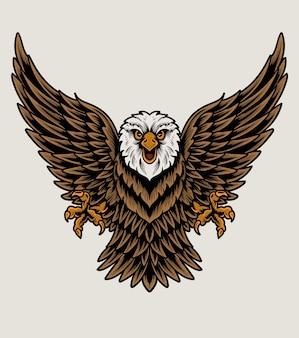 Illustratie adelaar vogel op witte achtergrond