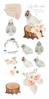 Illustratie aquarel vogel, paddestoel, bloem, blad en natuurlijke wilde hand getrokken set