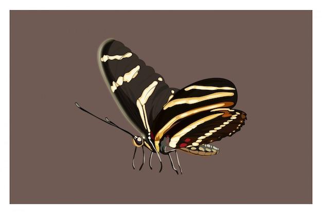 Illustratie cartoon vlinder hand tekenen