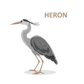 Illustratie, een mooie cartoon great-billed heron.