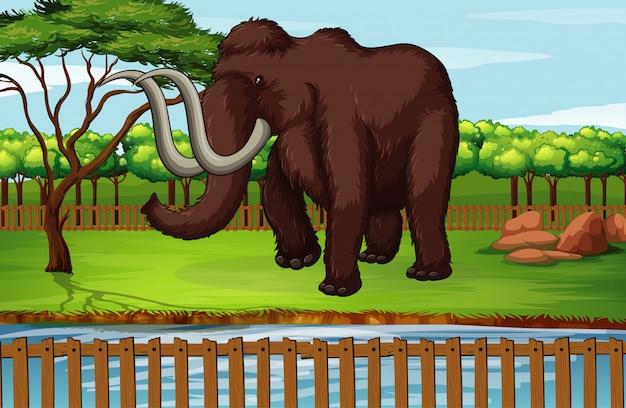 Illustratie scène met wollige mammoet in het park
