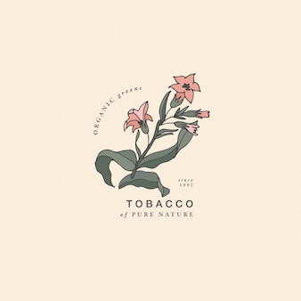 Illustratie tabak tak - vintage gegraveerde stijl. logo samenstelling in retro botanische stijl.