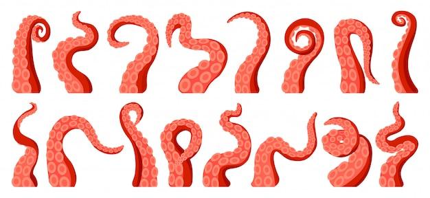 Illustratie tentakel van octopus op witte achtergrond.