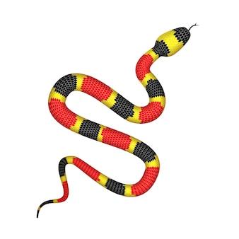 Illustratie van coral snake