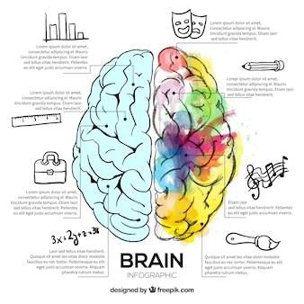 Illustratie van de hersenen met waterverf vlekken