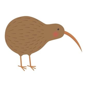 Illustratie van de vogelkiwi