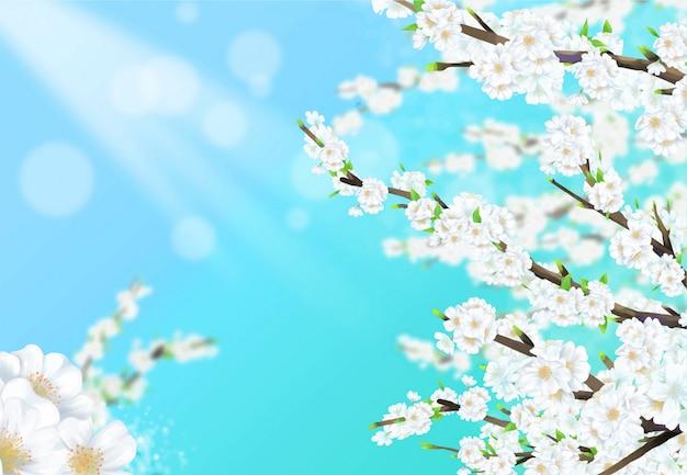 Illustratie van een kersenboom in volle bloei onder een blauwe hemel met zonlicht.