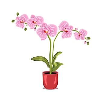 Illustratie van een roze orchidee in een bloempot die op witte achtergrond wordt geïsoleerd